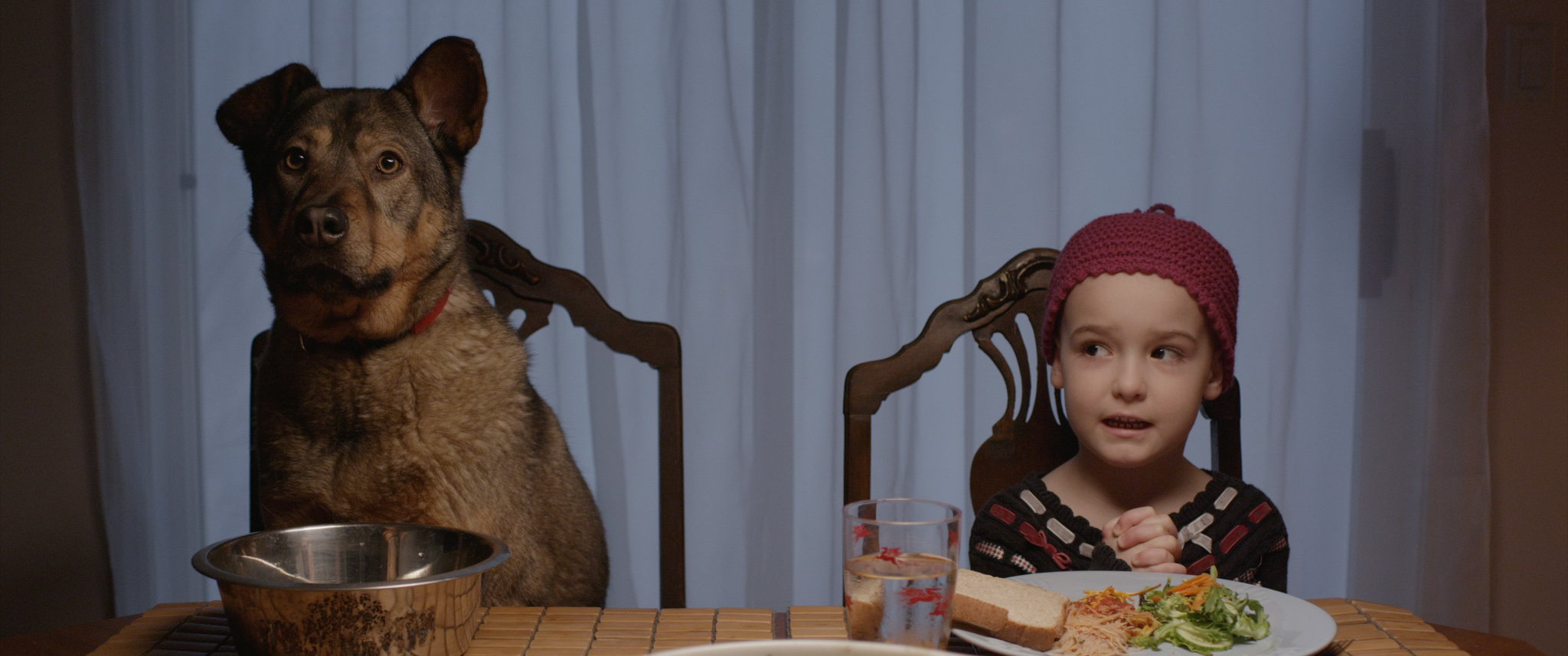 Sally and Abigail eat dinner (1)
