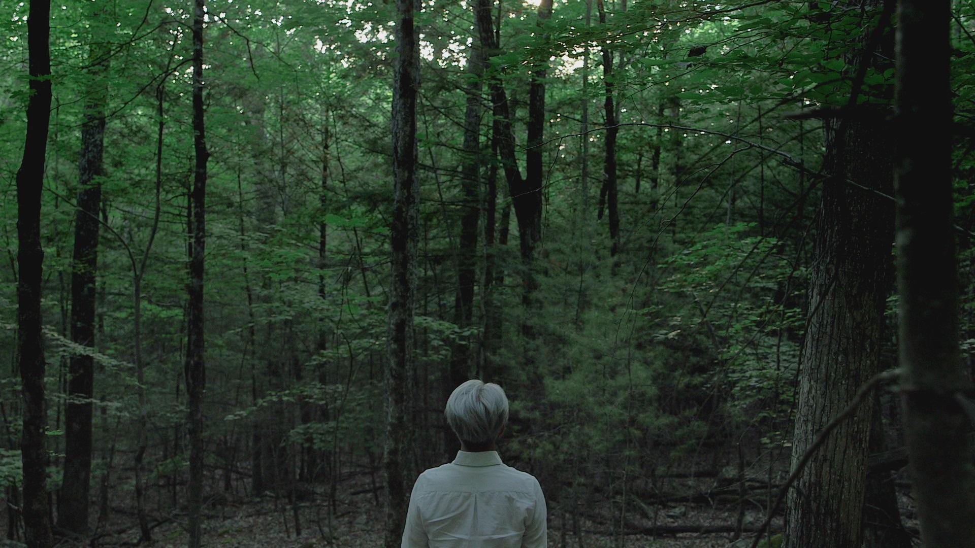 RYUICHISAKAMOTO_CODA__FOREST